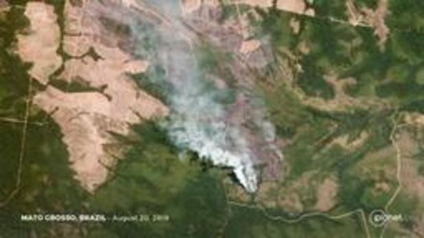 Europese Commissie ziet Mercosurakkoord als beste hefboom tegen bosbranden Amazonegebied