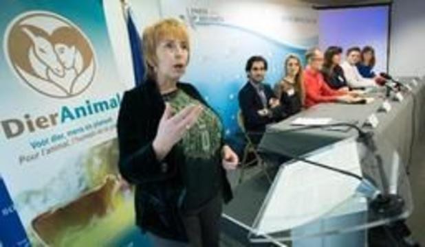 Dierenpartij DierAnimal neemt in Vlaams-Brabant deel aan Vlaamse verkiezingen