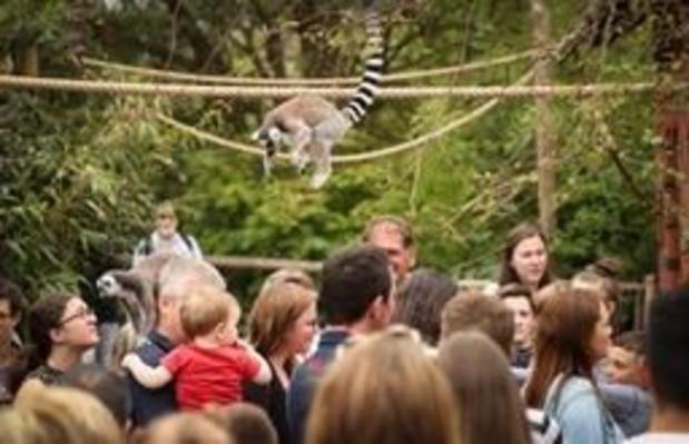 """Pairi Daiza """"Meilleur Parc Zoologique d'Europe"""" pour la deuxième année consécutive"""