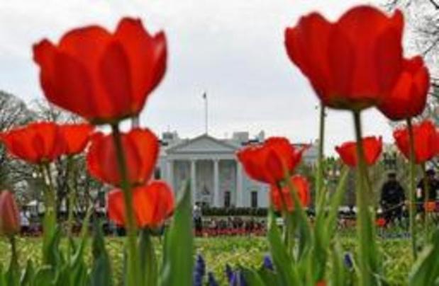 Man die zichzelf in brand stak aan Witte Huis is overleden