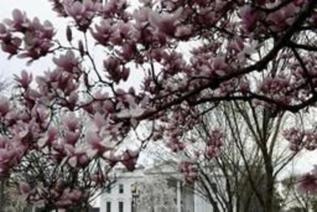 A la Maison Blanche, des accréditations délivrées au mépris de la sécurité nationale