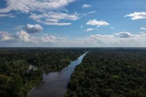 Vaticaan zet deur op kier voor mogelijke priesterwijdingen van gehuwde mannen in Amazone