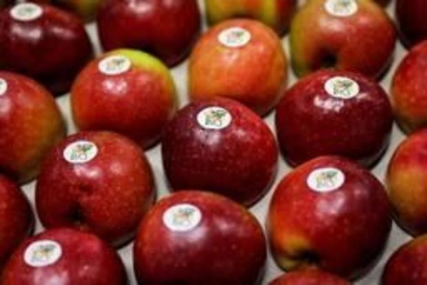 Plus de terres agricoles bio en Flandre, mais stagnation de la consommation en 2018