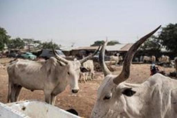 Gewapende mannen op moto's doden 34 dorpelingen in Nigeria