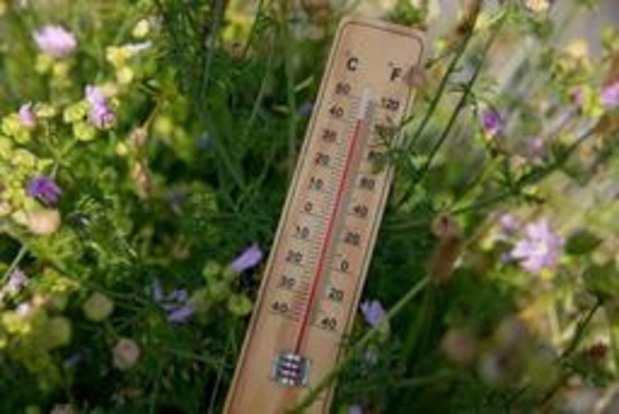 Hitterecord naar boven bijgesteld: woensdag meer dan 40 graden gehaald in Angleur