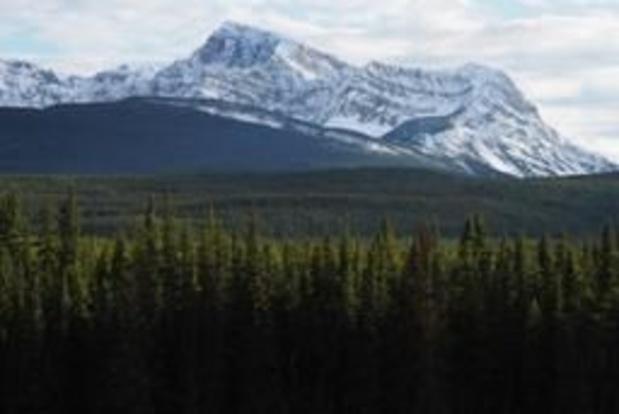 Canada: trois alpinistes présumés morts dans une avalanche dans le parc de Banff
