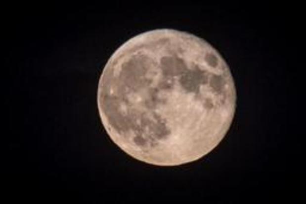 Peut-être bien de la vie sur la Lune après la chute de la sonde israélienne Bereshit