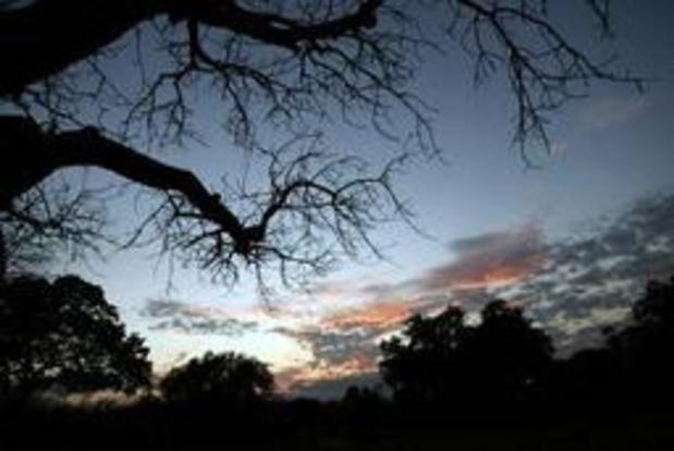 Bouw gestart van controversiële stuwdam in Tanzaniaans reservaat