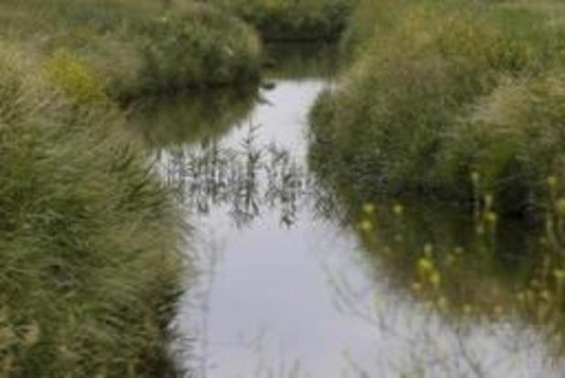 West-Vlaamse Harelbeek meest vervuilde van Europa