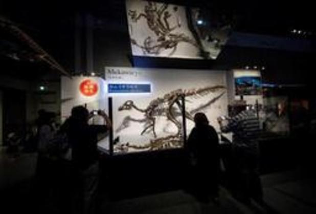 Nieuwe dinosaurussoort ontdekt in Japan