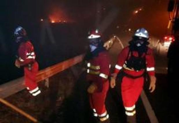 """Bosbrand op Gran Canaria """"onder controle"""""""