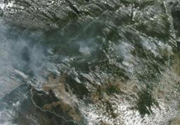 Incendies en Amazonie - Derrière les feux en Amazonie, l'appétit mondial pour le boeuf et le soja brésilien