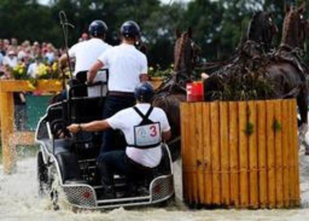 La Belgique en argent en attelage, Glenn Geerts en bronze en individuel