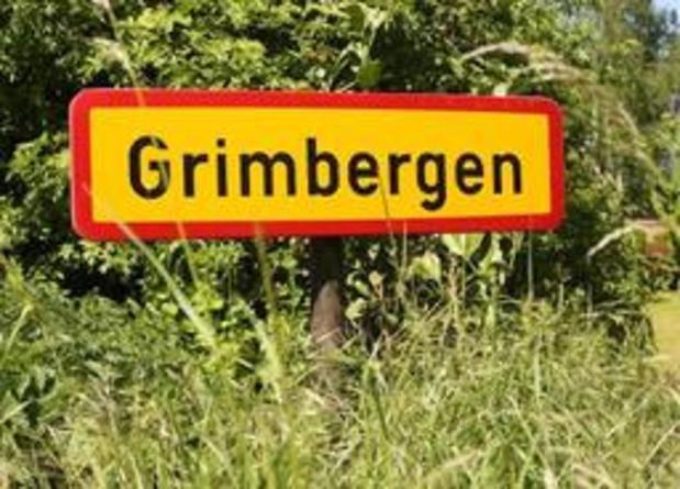 Groen Grimbergen voert actie tegen plannen gemeentebestuur om 101 bomen te kappen