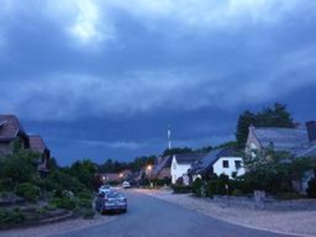 Noodweer - Vooral omgewaaide bomen bij onweersbuien in Limburg