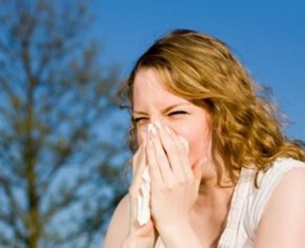 Limburgse app toont hoeveel pollen er in de lucht zitten