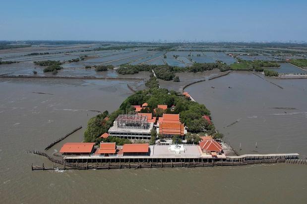 L'érosion côtière galopante en Thaïlande, partiellement freinée par la replantation de la mangrove