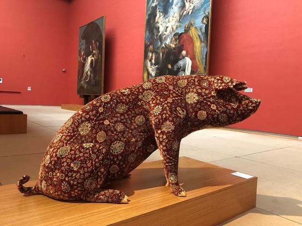 Venez admirer les cochons tatoués de Wim Delvoye aux Musées royaux des Beaux-Arts