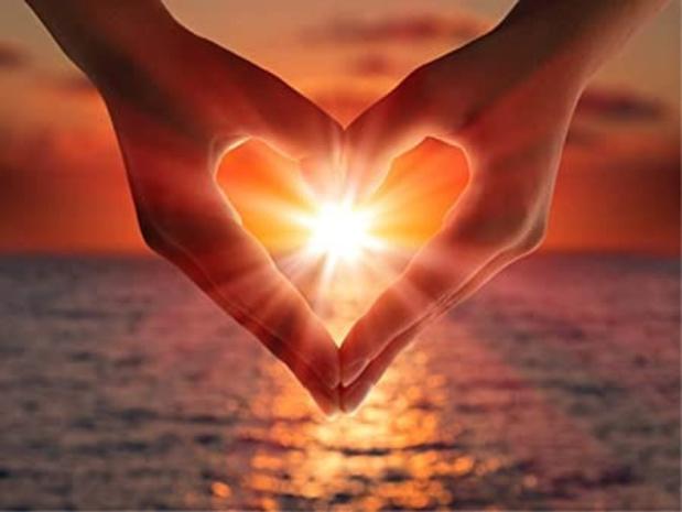 La vitamine D et le coeur