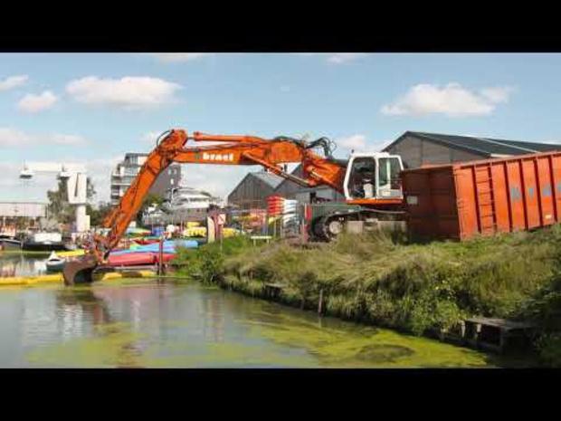 Ruiming dwergkoos met innovatieve 'Waterbull'