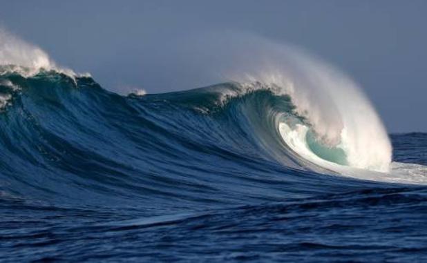 Greenpeace: 'België werpt zich ten onrechte op als beschermer van oceanen'