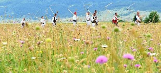 Dans la région des Balkans, de nouveaux pays passent au vert sur la carte sanitaire
