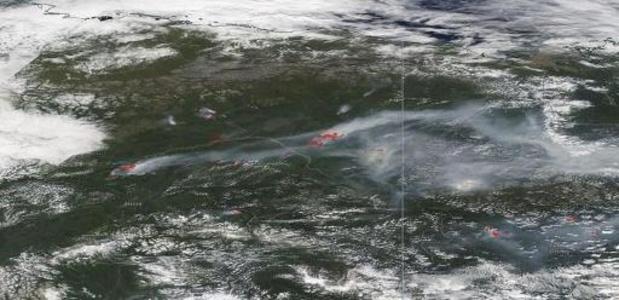 """Nederlandse onderzoekers ontdekken """"overwinterende branden''"""