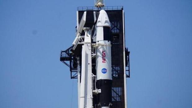 La NASA envoie des bébés pieuvres à la station spatiale internationale