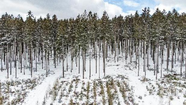 Météo - L'hiver se prolonge encore un peu