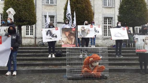 Animal Rights voert voor de derde keer actie tegen apenexperimenten aan de KU Leuven