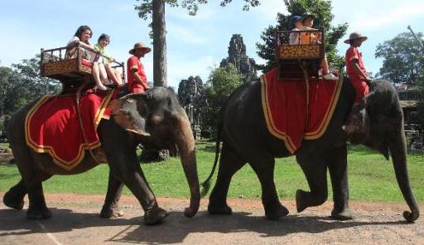 Cambodge: les controversées balades à dos d'éléphants interdites à Angkor