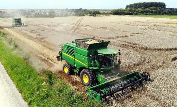 Céréales, pommes de terre, fruits... Les récoltes souffrent des mauvaises conditions météo