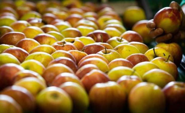 Les supermarchés ne se ruent pas sur les pommes et poires Fairebel