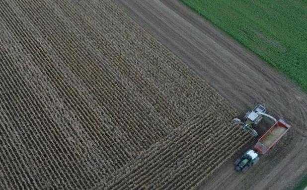 Vlaams en federaal minister van Landbouw verzetten zich tegen uitspraken Maron