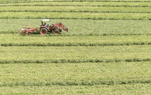 Politique agricole commune: la Belgique nourrit encore quelques réticences