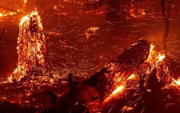 Bosbranden Californië - Bosbranden verwoesten bijna 8.000 vierkante kilometer, een record sinds 1987