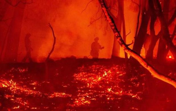 Bosbranden Californië - Bosbrandenseizoen in Californië breekt triest record