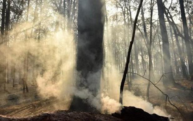 Incendies en Australie - La Nouvelle-Calédonie embrumée par des fumées des incendies en Australie