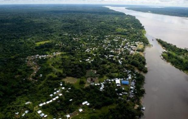 """Déforestation et assassinats : l'Amazonie colombienne connaît une """"crise sans précédent"""""""
