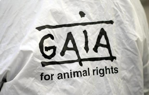 """Gaia: """"Dit hadden we niet zien aankomen"""""""