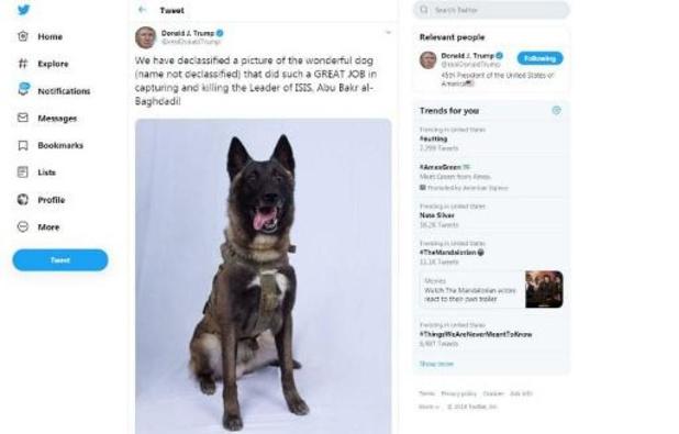Hond die sleutelrol speelde tijdens operatie uitgenodigd op Witte Huis