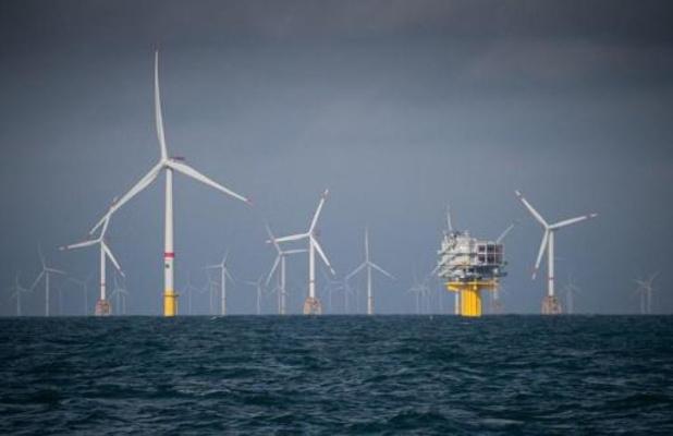 Les impacts environnementaux des parcs éoliens offshore ne sont ni noirs ni blancs