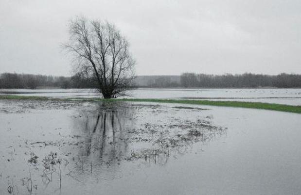 Le niveau des eaux dans le Limbourg et le Brabant flamand reste très élevé