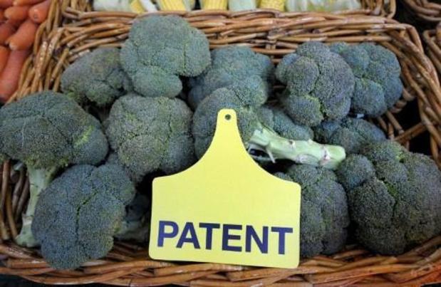 Geen patentrecht voor planten, oordeelt EU-octrooibureau