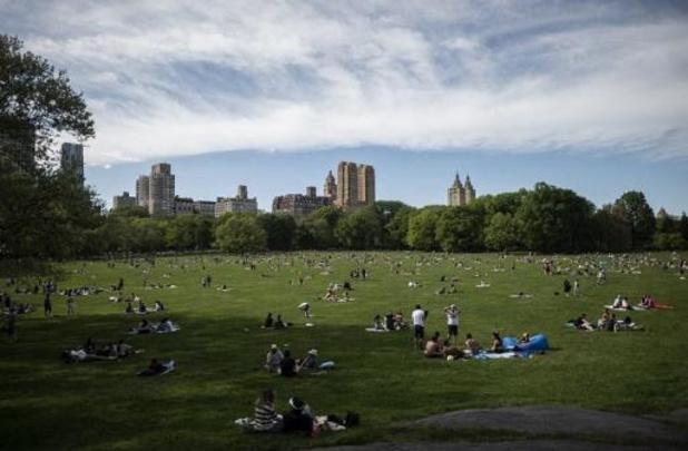 Inculpation d'une femme qui avait inventé son agression par un homme noir à Central Park