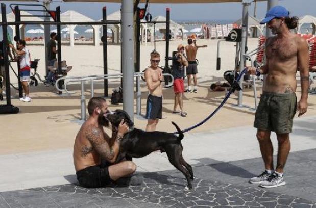 Tel Aviv gaat strijd aan tegen hondenpoep via DNA-systeem