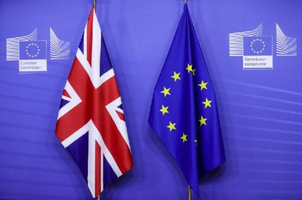 Première haie franchie auprès des eurodéputés pour l'accord post-Brexit