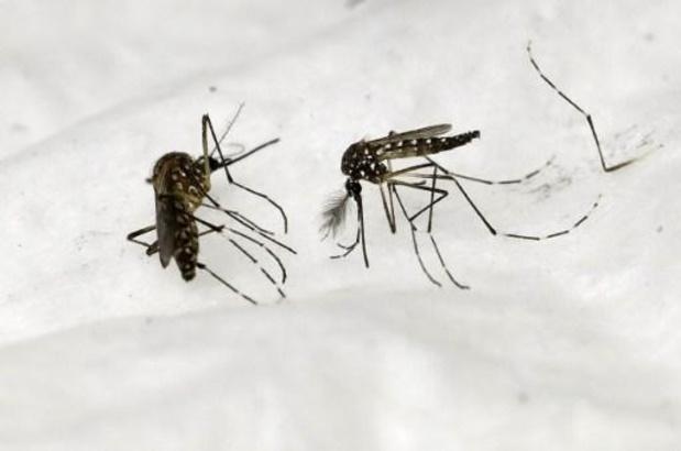 WHO waarschuwt voor resistentie tegen malariageneesmiddelen