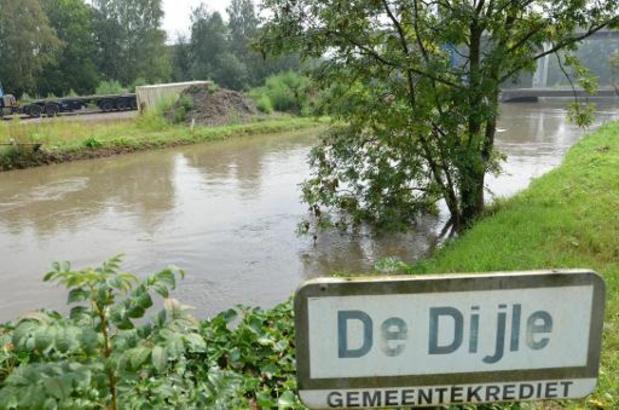 Noodweer - Alle zeilen bijgezet om visbestand in Demer en Dijle te redden