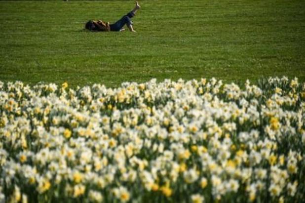 Temps ensoleillé et doux en début de semaine, risque de neige en Ardenne samedi prochain